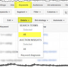 AdWords search queries